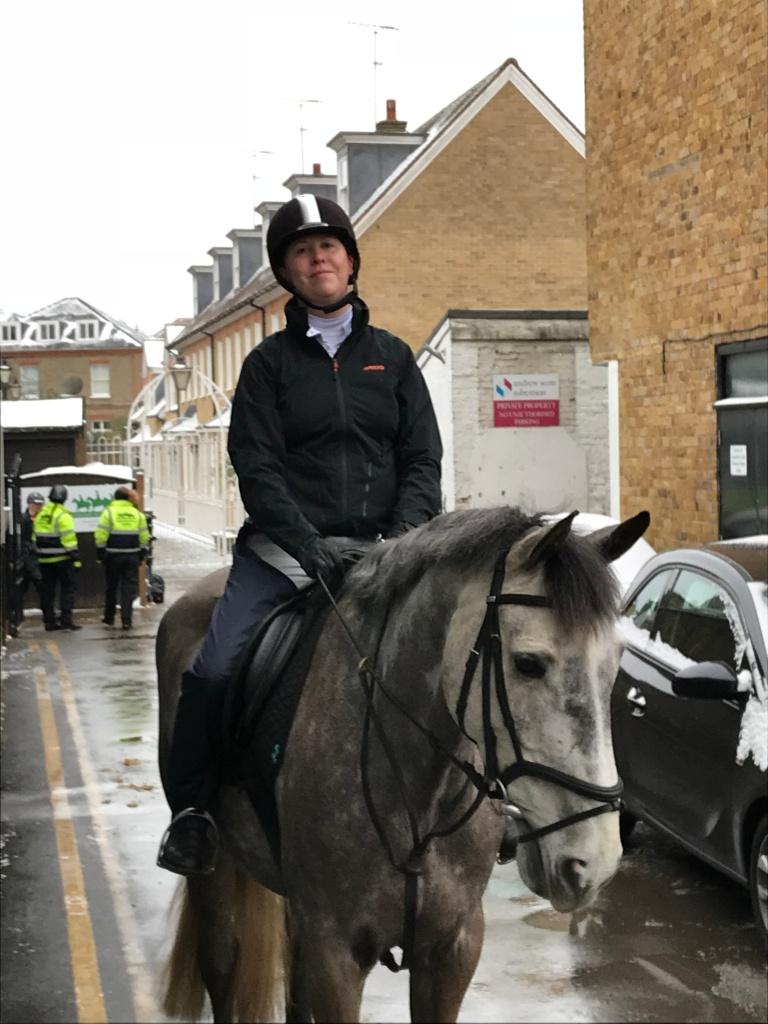 Dappled grey horse Merlin at Wimbledon Village